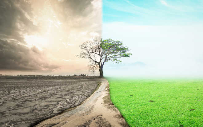 8 Indian states highly vulnerable to climate change: Report