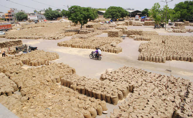 Wheat procurement: DC reviews preparations in Amritsar