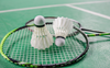 India Open badminton tournament postponed due to surge in COVID-19 cases
