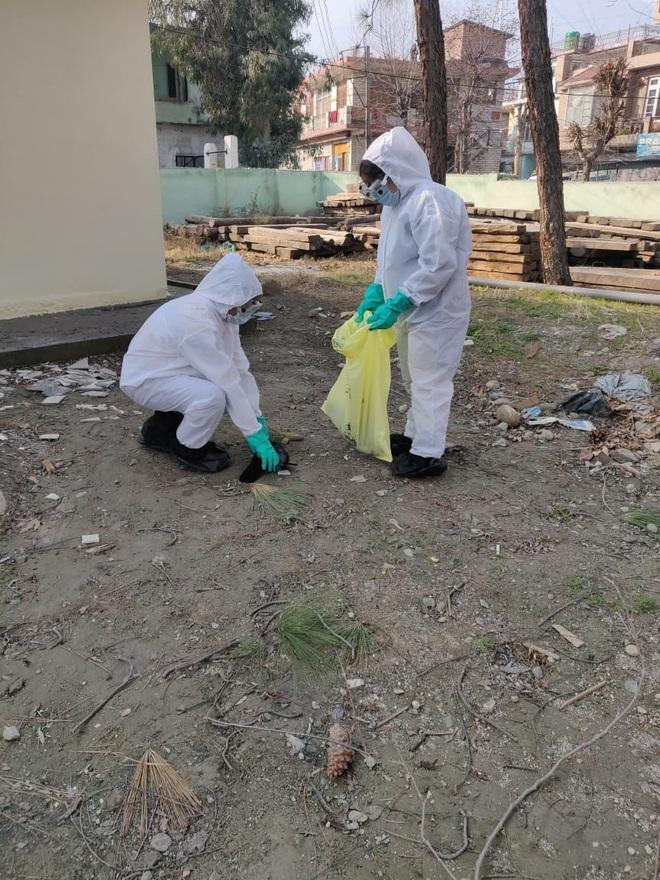 Bird flu scare in Kullu as dead crows test positive