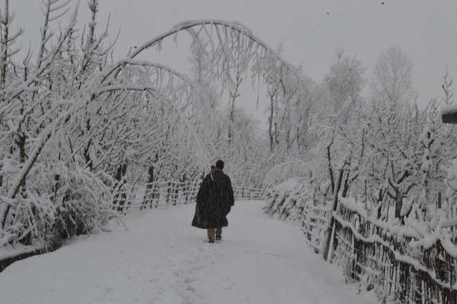 Rain, snow likely in J&K, Ladakh