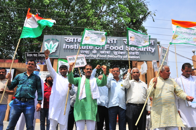 Protesting farmers gherao FCI offices, seek legal guarantee on MSP