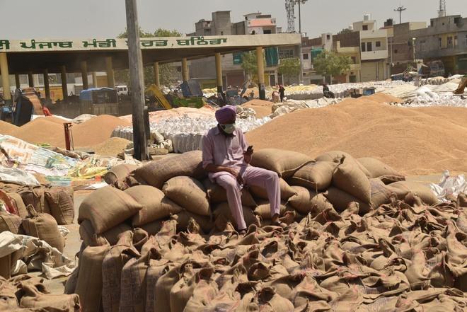 Punjab Govt nod to used gunny bags