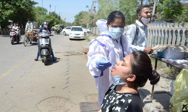 4 deaths, 502 fresh cases in Jalandhar district