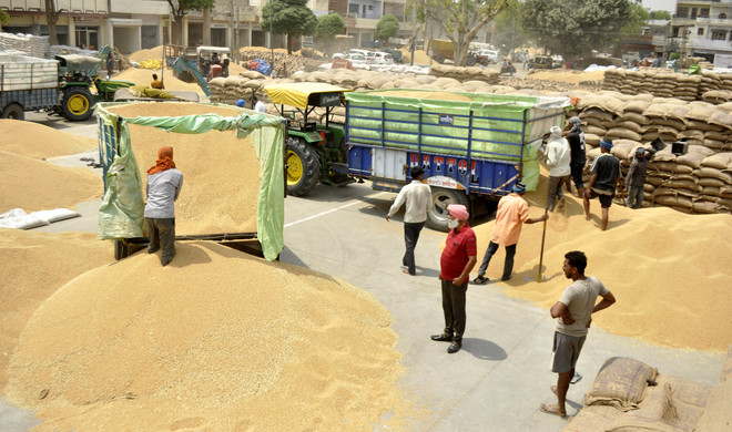 Over 10K farmers in Punjab opt for e-payment