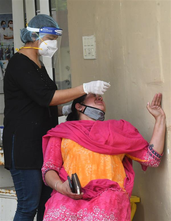 169 new cases of Covid in Panchkula