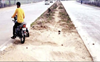 Close illegal cuts on National Highway
