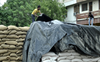 Rain hits wheat procurement, lifting