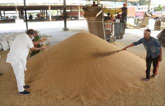 No procurement on Day 1 as arhtiyas go on strike