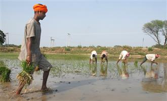 Bonded labourers: MHA letter attempt to 'defame' farmers
