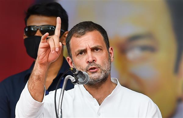 Only way to stop COVID-19 spread now is full lockdown: Rahul Gandhi