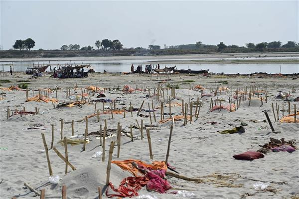 Rain uncovers 'mass shallow graves' along Ganga in UP; media reports suggest over 2,000 bodies found