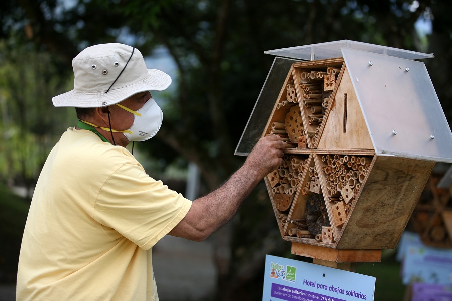 Busy bees in Colombia get respite in bamboo hotels
