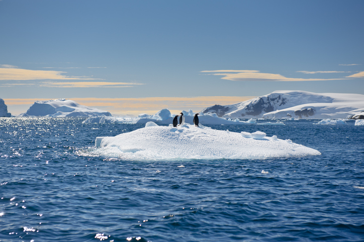 Antarctic ice sheet melting to push sea level by 20 per cent