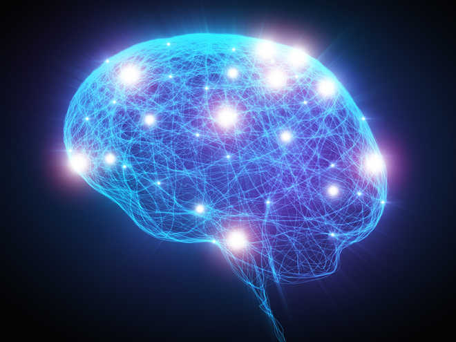 Scientists claim to develop brain tissue from 3D-printed bioreactor