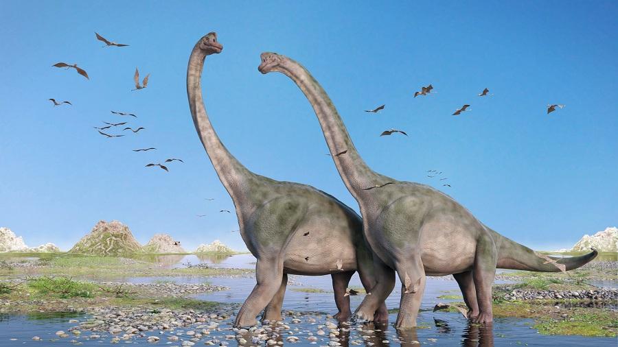 100 million-year-old bones of sauropod dinosaurs discovered in Meghalaya
