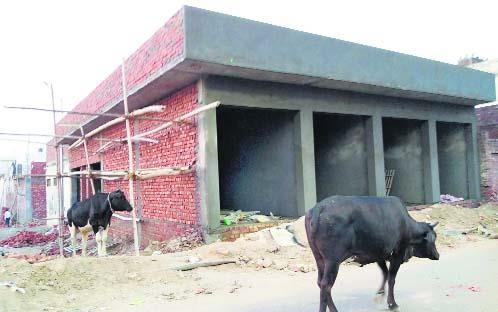 Construction of shops continues near Sanauri Adda