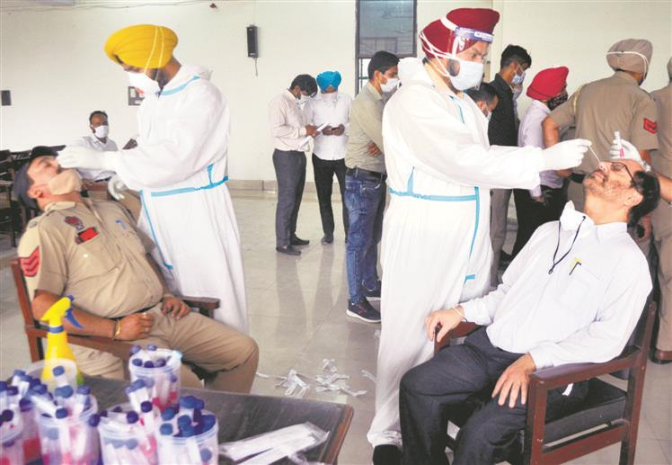In highest single-day toll, 19 succumb; 677 contract virus in Patiala