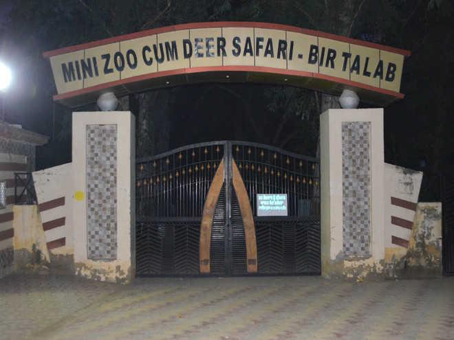 Bathinda zoo shut