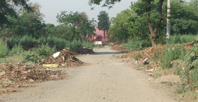 Garbage outside Sector 38 (West) Sports Complex  irks visitors