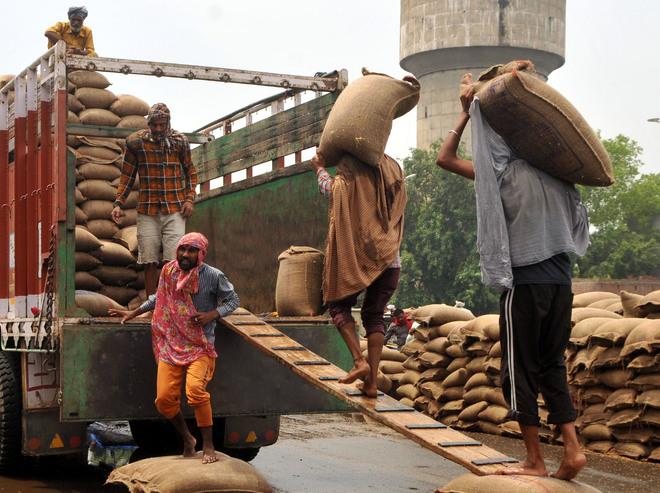 Wheat procurement season ends