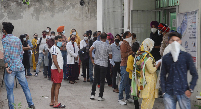 9 lose life to virus; 799 fresh infections in Jalandhar