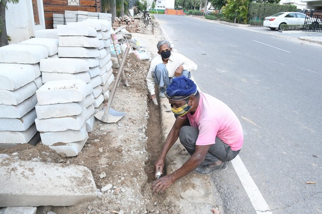 Lesson well learnt, tricity migrant labourers stay put