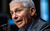 Fauci: India opened up too soon