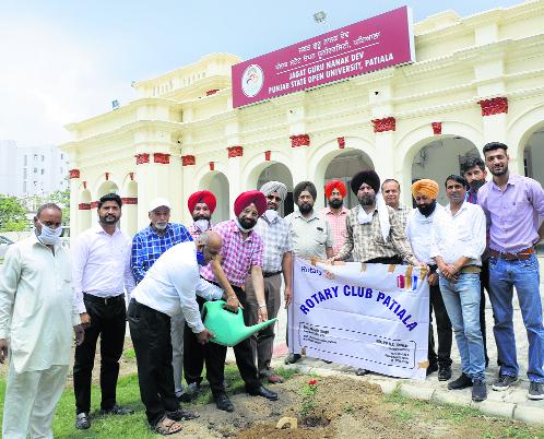 Punjab state open university organises plantation drive