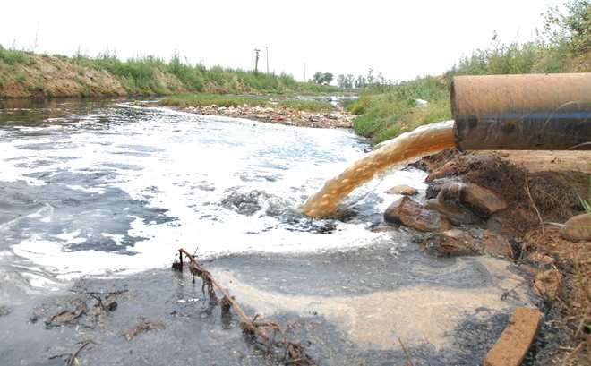 NGT pulls up Punjab, Himachal, Haryana over pollution in Ghaggar river