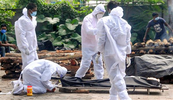 Centre trashes report on higher Covid deaths