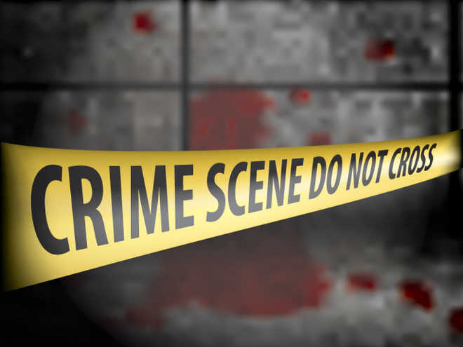 Elderly woman killed by caretaker during robbery at west Delhi flat