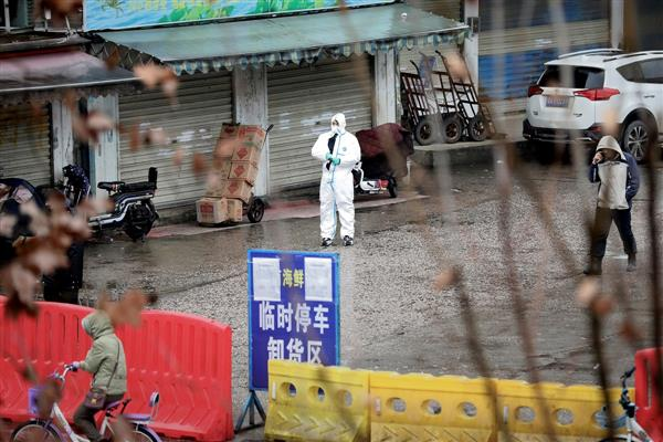 Wuhan markets sold dozens of wild animals prior to Covid pandemic