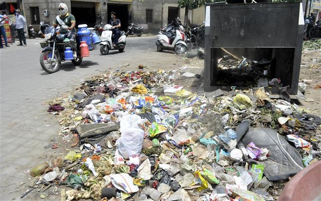 Regularisation of jobs: Garbage piles up in Patiala city as MC sanitation staff continue protest