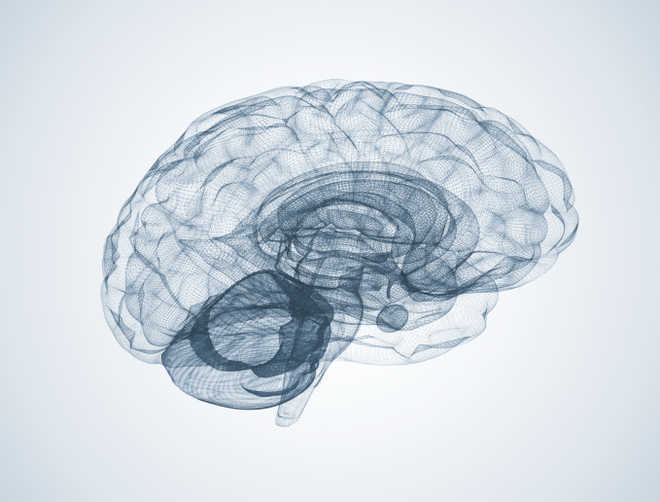 Study identifies how COVID-19 linked to Alzheimer's disease-like cognitive impairment