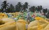 Sri Lanka seeks UN help in assessing damage from ship fire