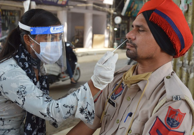 Ludhiana records 36 fresh cases; recovery rate reaches 96.7%