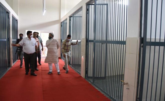 Ludhiana MC resumes sterilisation drive in city