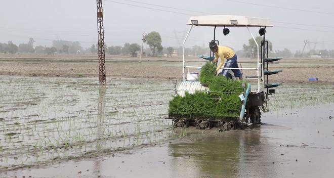 Progressive farmer from Dyalpur village near Kartarpur imports hi-tech machine from Japan