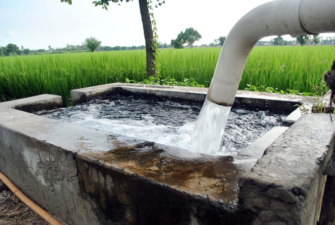 7,621 tubewell connections to be released in Haryana