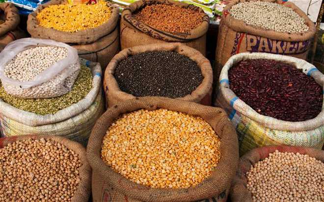 Provide foodgrain to poor, officials told