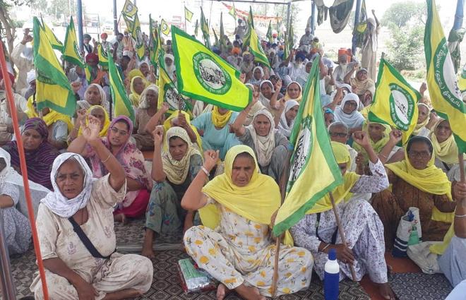 MSP hike not enough, say farmers