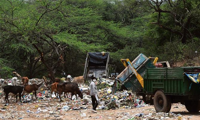 Haryana Speaker Gian Chand Gupta takes U-turn on Panchkula's Jhuriwala dumping site