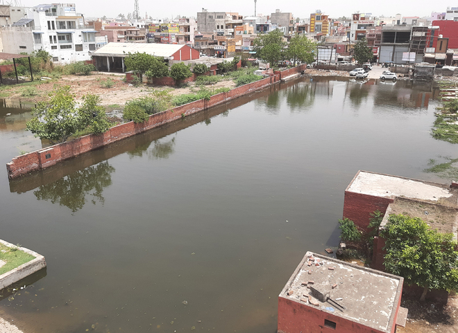 Jhajjar old bus stand site submerged in rainwater