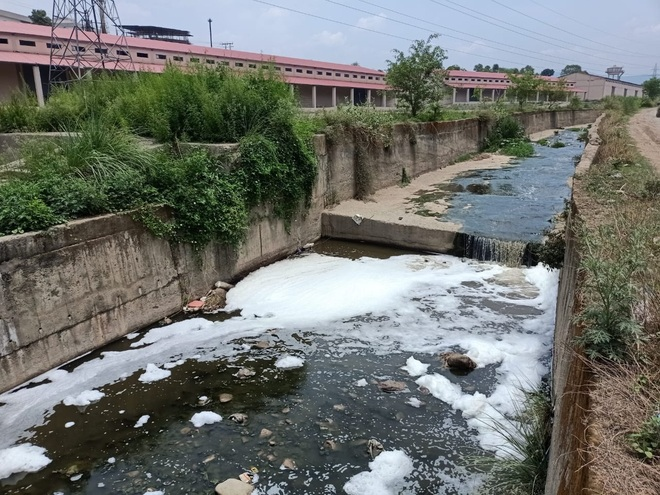 SPCB slammed for inaction on water pollution in Baddi