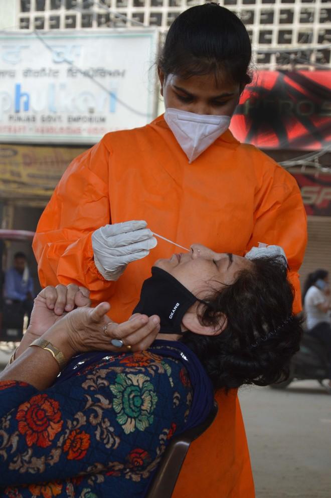 203 contract virus, 3 dead  in Ludhiana