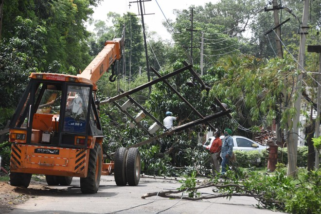 High-velocity winds uproot trees, power supply hit