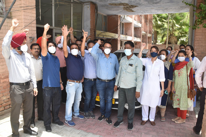 Allowance cut: Doctors on strike today in Punjab, OPDs set to take hit