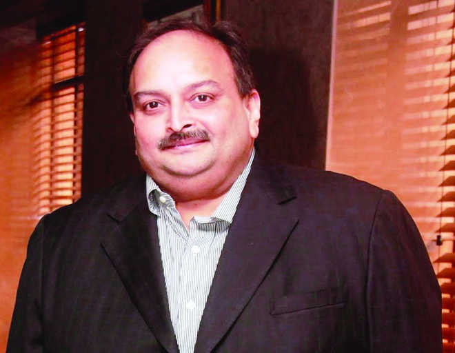 Fugitive businessman Mehul Choksi case hearing in Dominica today