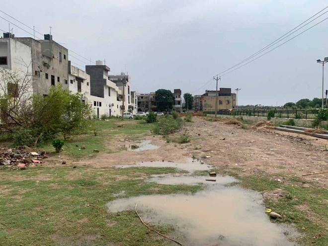 Ludhiana Improvement Trust draws flak for plan to convert green belt into residential plots